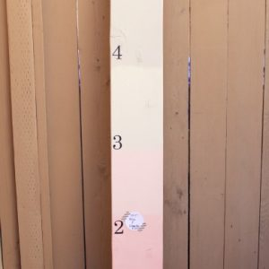 Pink & Gray Ombre Growth Chart
