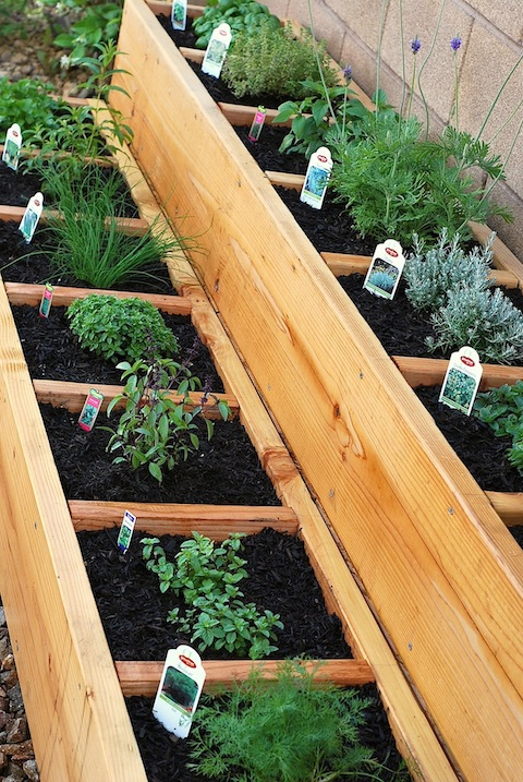 Raised Bed Herb Garden Ideas