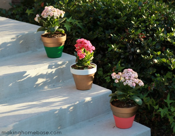 Color Block Flower Pots