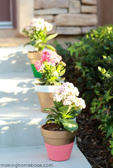 Paint Terra Cotta Flower pots