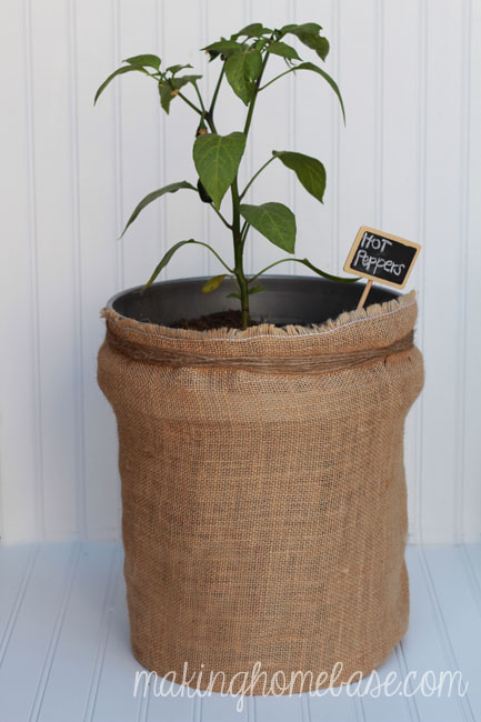 dress up your garden with burlap bag