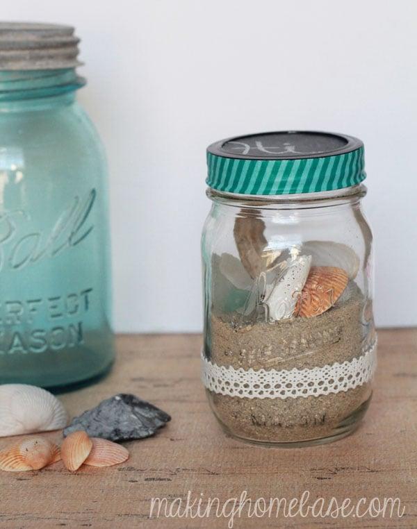 seashell terrerium