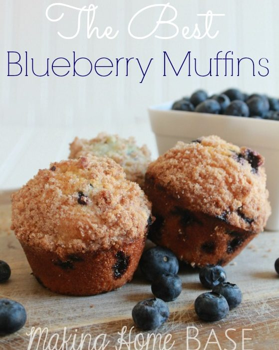 Blueberry Muffins, THE Best I've Ever Made – You'll Love Them Too!