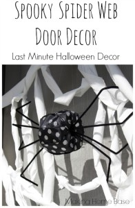 Spooky Spider Web Door Decor