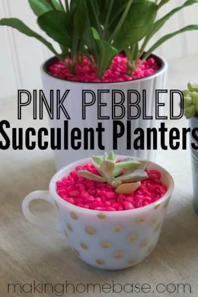 Pink Pebbled Succulent Planters