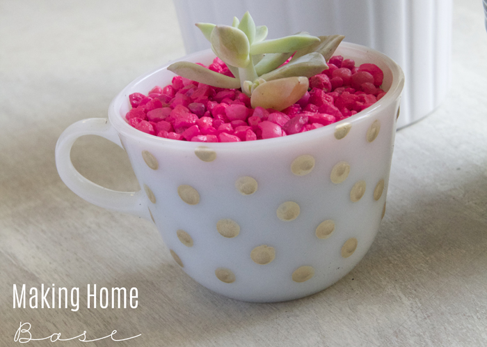 Tea Cup Succlent Planter