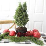 Mini Tree Christmas Centerpiece