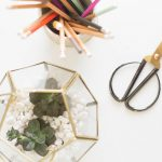 DIY Succulent Terrarium | DIY Friday
