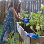 A Raised Garden Bed + Gardening with Kids