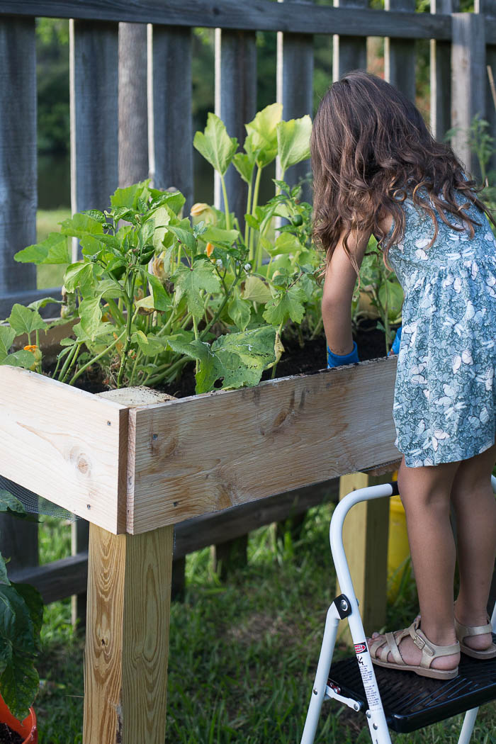 Gardening with Kids - Tips for teaching your kids about growing ...