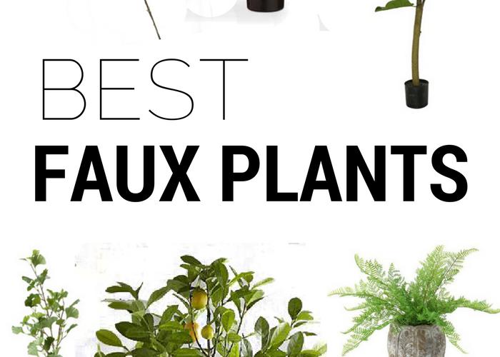 The Best Fake Indoor Plants