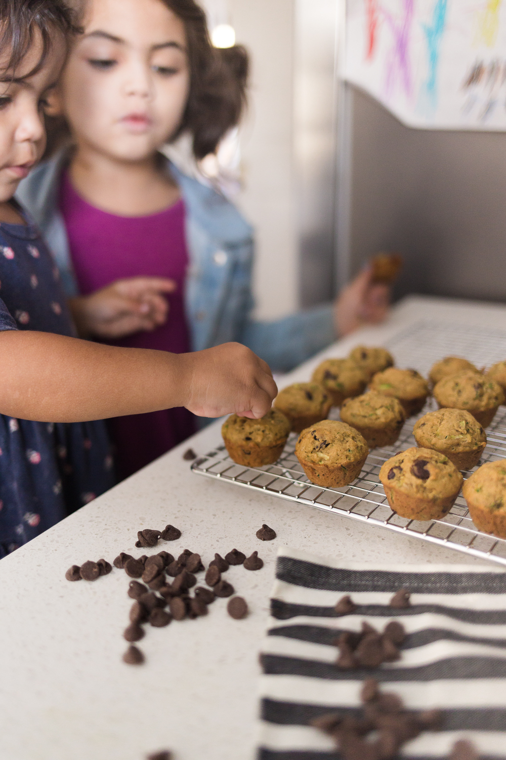 Delicious and healthy chocolate chip zucchini muffins that your kids will love