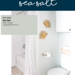 Sherwin Williams Sea Salt – A Perfect Blue Green Paint Color