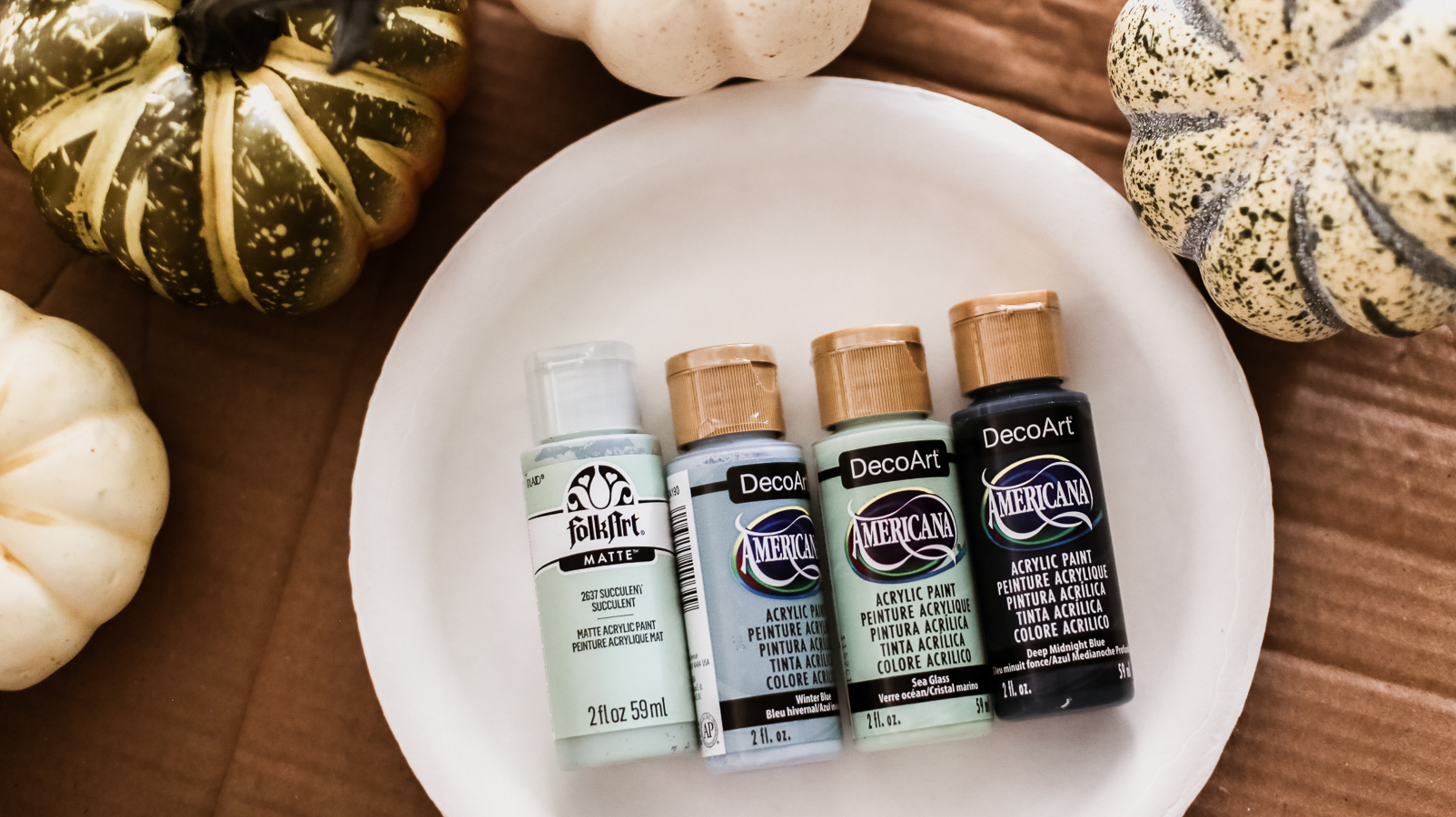 Paints used for Pumpkin Painting